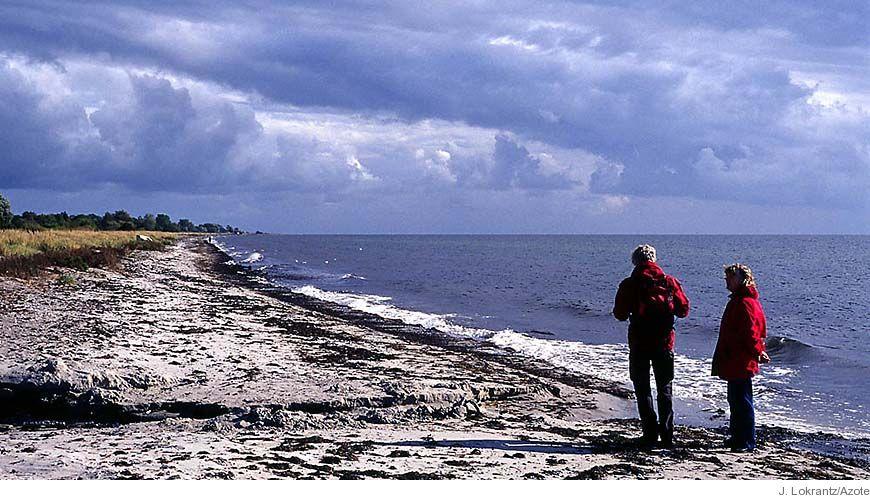 Bild - Det ekonomiska värdet av ekosystemtjänster tillhandahållna av Östersjön och Skagerrak