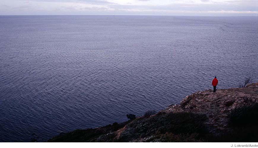 Bild - Kust och hav - revision av nationell miljöövervakning 2006