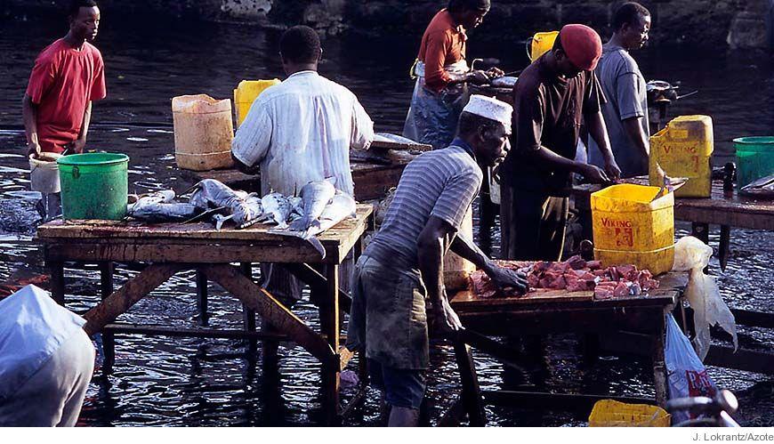 Bild - Fånga värdet av småskaligt fiske: en titt på marknader, handelsrelationer och fiskebeteende