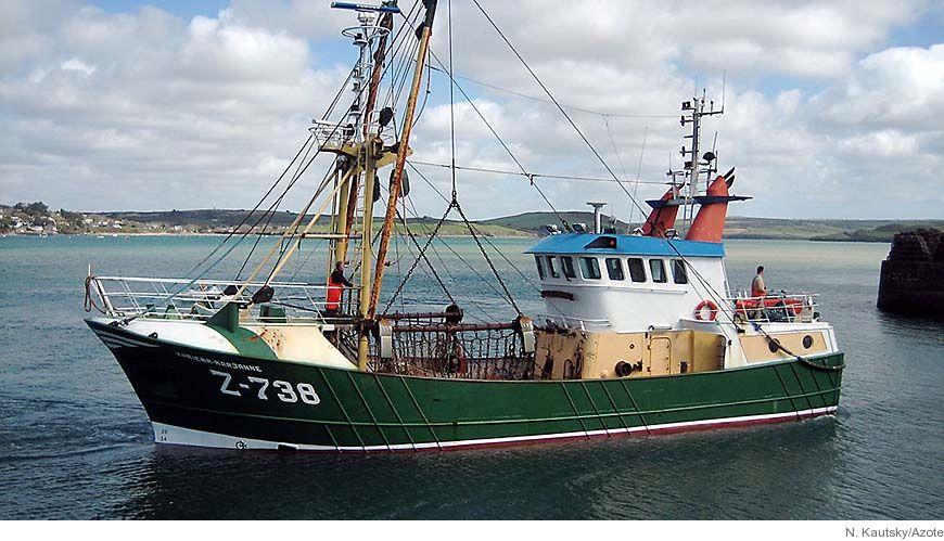 Bild - Grönboken om EUs fiskeripolitik