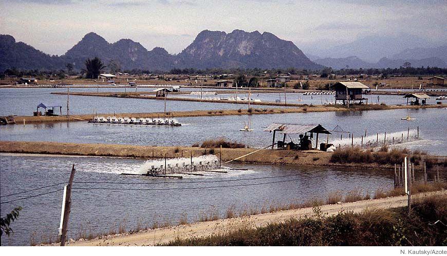 Bild - Koloniserade kuster: Vattenbruk och resursflöden i världen: exempel från Sri Lanka och Filippinerna