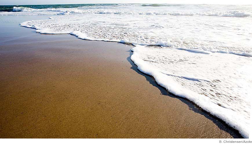Bild - Så kontrolleras kvävecykeln i havet: betydelsen av syre och av små och stora djur