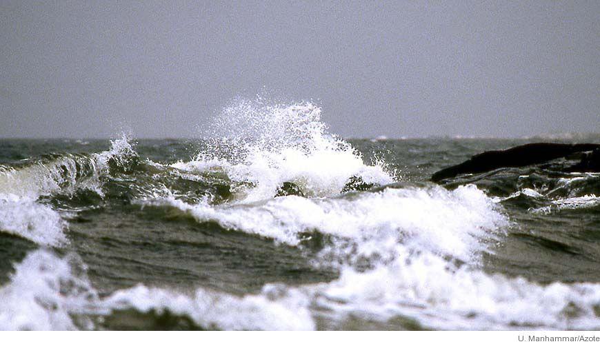 Bild - Vågenergiöverföring och den marina miljön: Kolonisationsmönster och bosättningsdynamik