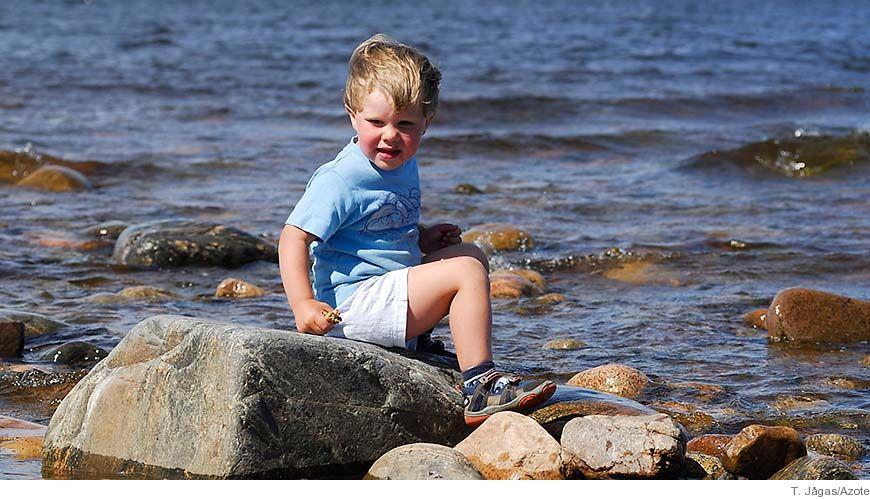 Bild - Ekosystemtjänster tillhandahållna av Östersjön och Skagerrak