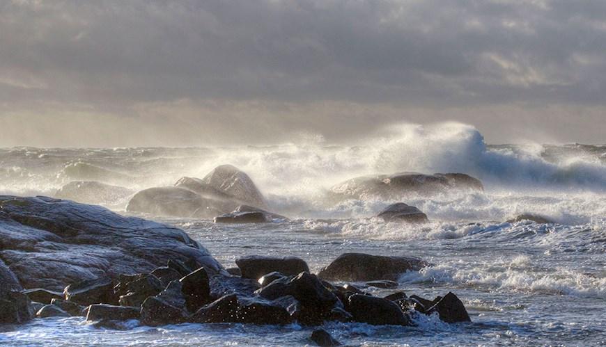 Bild Forskare vill vända trenden för havet